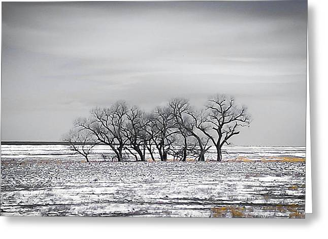 Kansas Snow Greeting Card