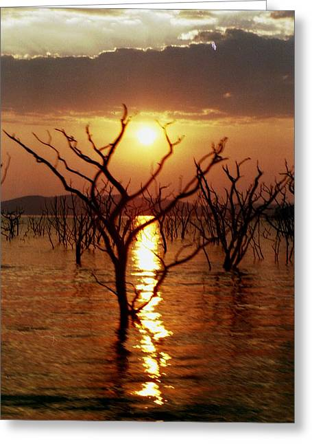 Greeting Card featuring the photograph Kariba Sunset by Jeremy Hayden