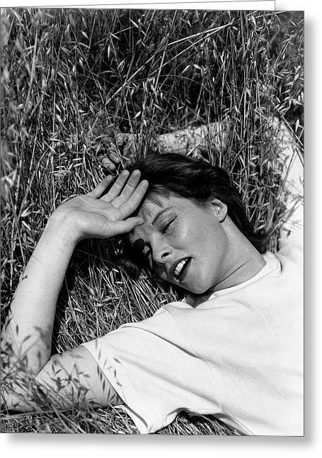 Katharine Hepburn Lying Down In The Grass Greeting Card by George Hoyningen-Huen?