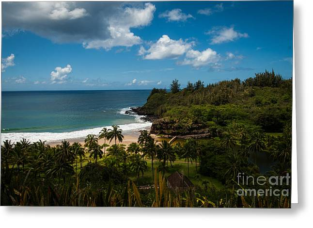 Kauai South Shore Jungle Greeting Card