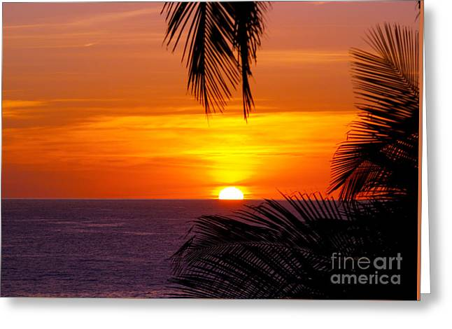 Kauai Sunset Greeting Card by Patricia Griffin Brett