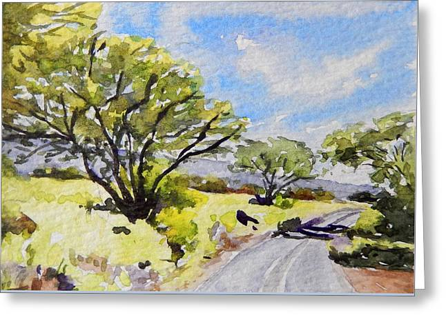Kaupo Trees Greeting Card by Stacy Vosberg