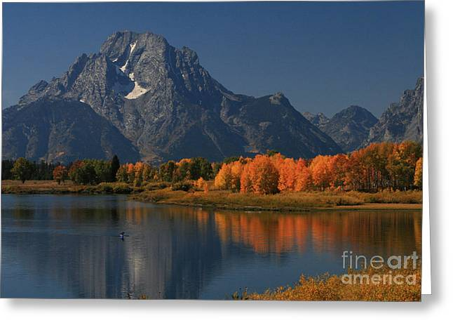 Kayak At Oxbow Bend Greeting Card by Clare VanderVeen