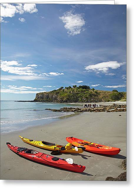 Kayaks On Beach Near Doctors Point Greeting Card by David Wall