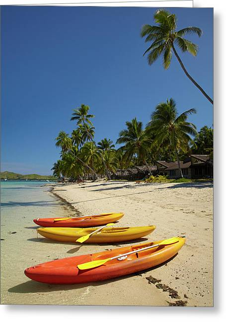 Kayaks On The Beach, Plantation Island Greeting Card by David Wall
