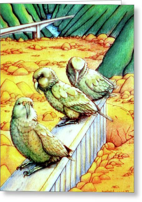 Kea Greeting Card by Barbara Stirrup