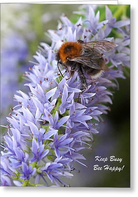 Keep Busy - Bee Happy 2 Greeting Card