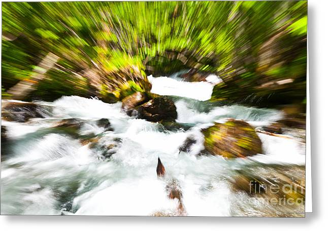 Keep Your Focus Greeting Card by Chris Heitstuman