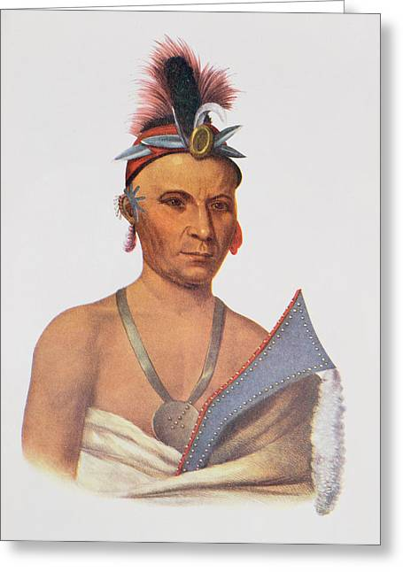 Keesheswa Or The Sun, A Fox Chief, C.1837, Illustration From The Indian Tribes Of North America Greeting Card by Charles Bird King