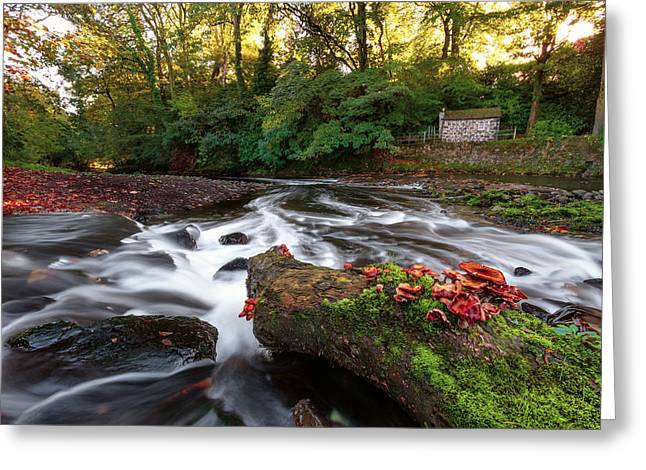 Kells Water  Northern Ireland Greeting Card