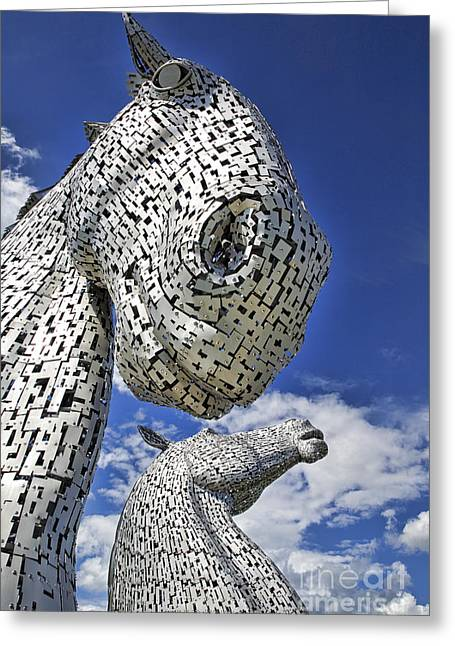 Greeting Card featuring the photograph Kelpies by Craig B
