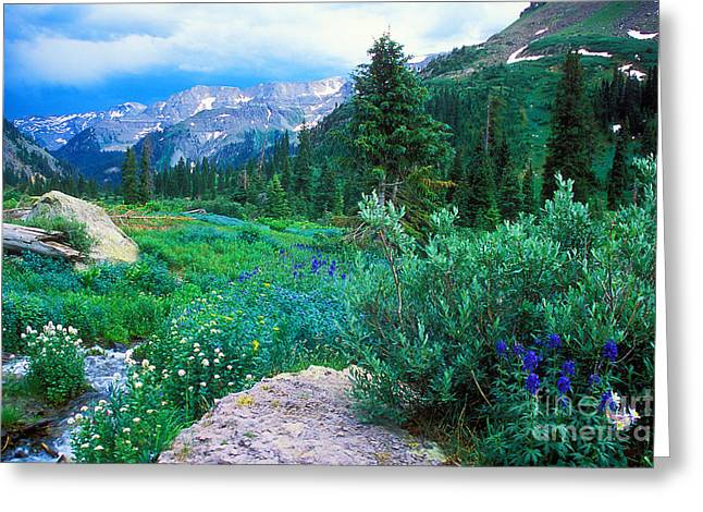 Kennebec Pass Greeting Card