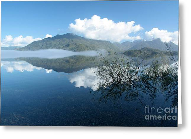 Kennedy Lake Greeting Card by Frank Townsley