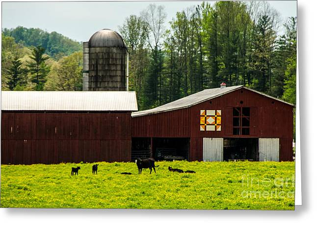 Kentucky Barn Quilt - 1 Greeting Card by Mary Carol Story