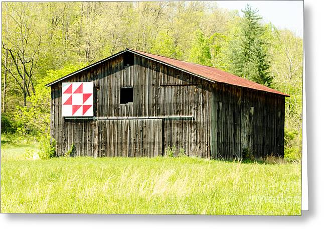Kentucky Barn Quilt - Flying Geese Greeting Card by Mary Carol Story