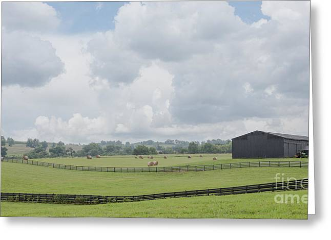 Kentucky Farm Greeting Card by Kay Pickens