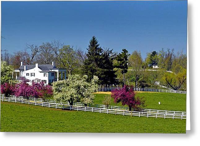 Kentucky Horse Farm Greeting Card