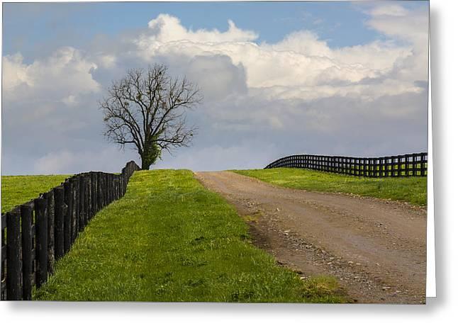Kentucky Horse Farm Road Greeting Card