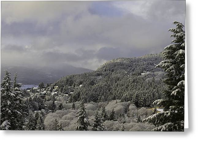 Greeting Card featuring the pyrography Ketchikan Alaska After A Small Snow. by Timothy Latta