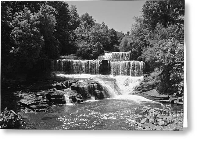 Keuka Trail Waterfall Greeting Card by William Norton