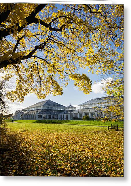 Kew Gardens Temperate House_ London Greeting Card by Charles Bowman