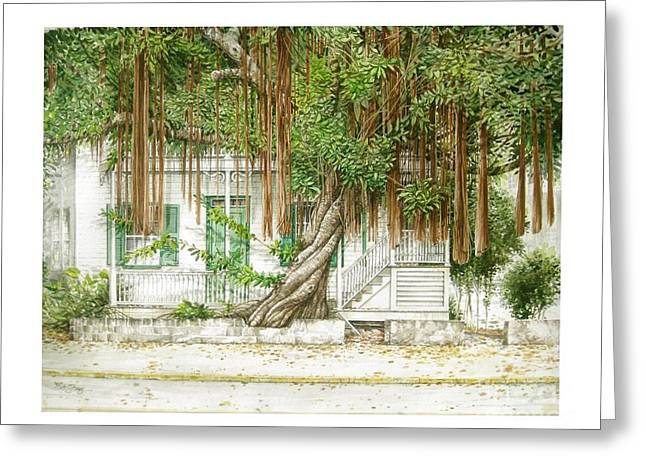 Key West Banyan Greeting Card