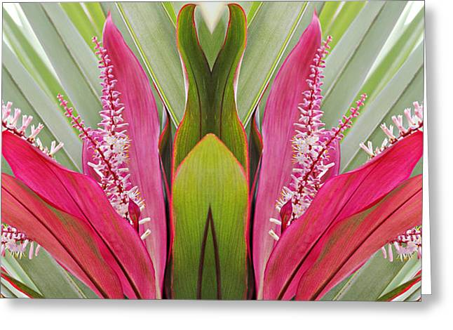 Key West Symmetry Greeting Card