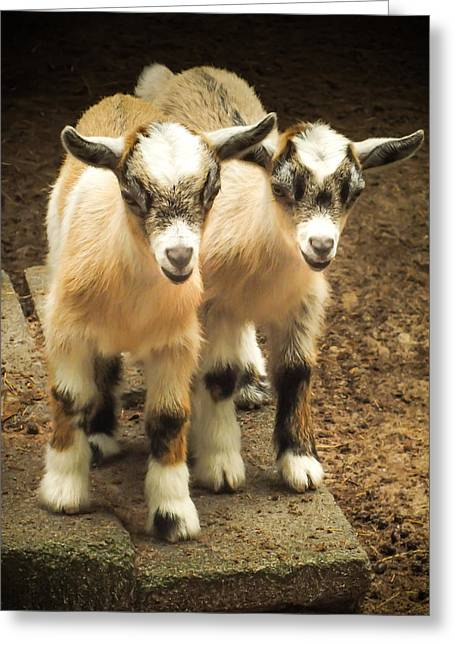 Kids One And Two Greeting Card by Karen Wiles