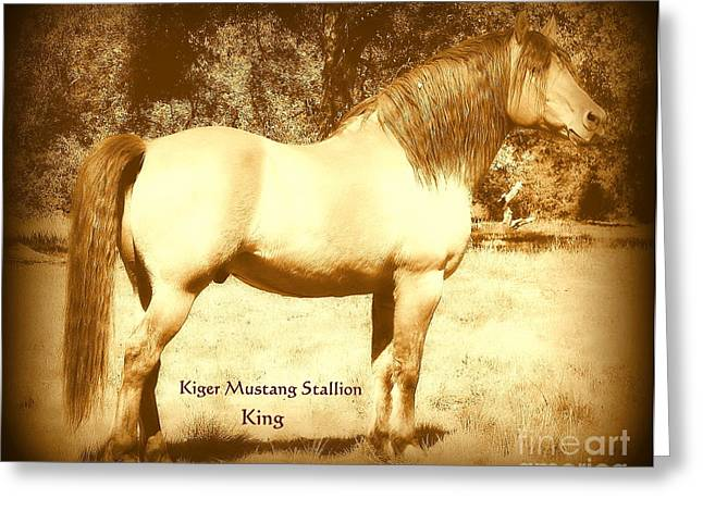 Kiger Mustang Stallion King Sepia Greeting Card by Jodie  Scheller
