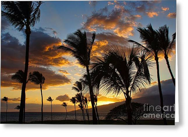 Kihei At Dusk Greeting Card