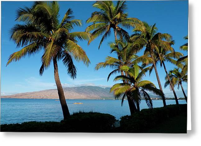 Kihei, Maui, Hawaii Greeting Card
