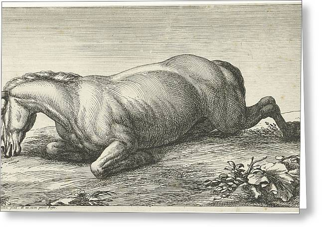 Killed Horse On The Belly Lying, Jan Van Huchtenburg Greeting Card by Quint Lox