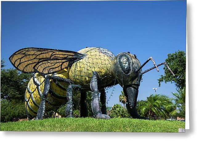 Killer Bee Model Greeting Card