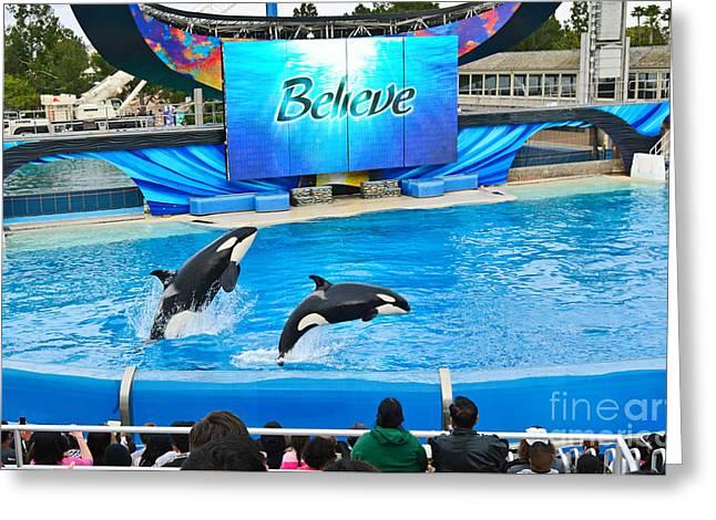 Killer Whales Perform In Shamu Stadium At Seaworld. Greeting Card by Jamie Pham