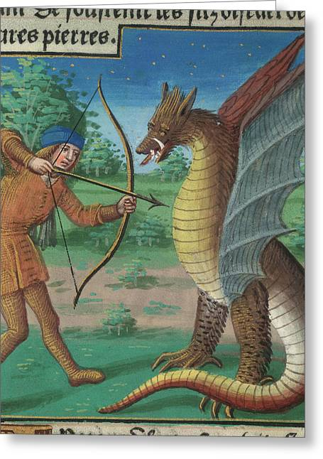 Killing The Python Greeting Card by British Library