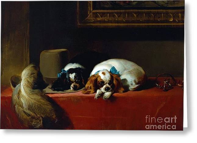 King Charles Spaniels Greeting Card by Pg Reproductions