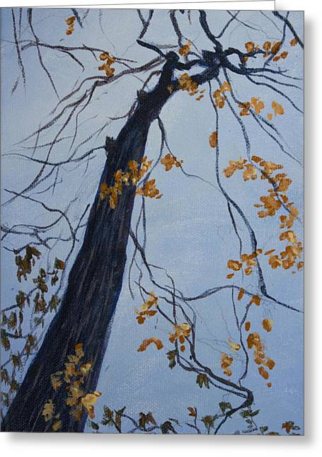 King Of The Forest Greeting Card by Janet Felts