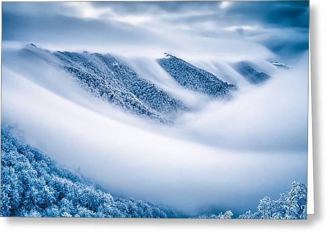 Kingdom Of The Mists Greeting Card by Evgeni Dinev