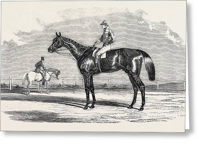 Kingston, The Winner Of The Goodwood Cup Greeting Card