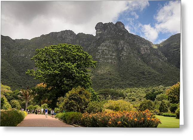 Kirstenbosch Greeting Card