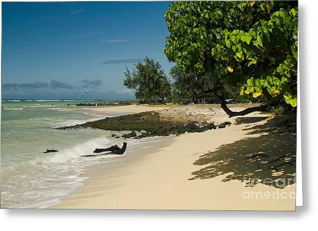 Kite Beach Kanaha Beach Maui Hawaii Greeting Card
