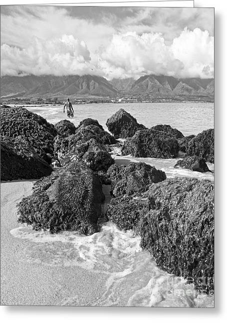 Kite Beach Maui Hawaii Greeting Card by Edward Fielding