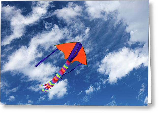 Kite Flying In Sky Greeting Card