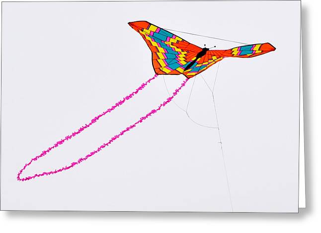 Kite With Pink Tail Greeting Card by Michael Bruce