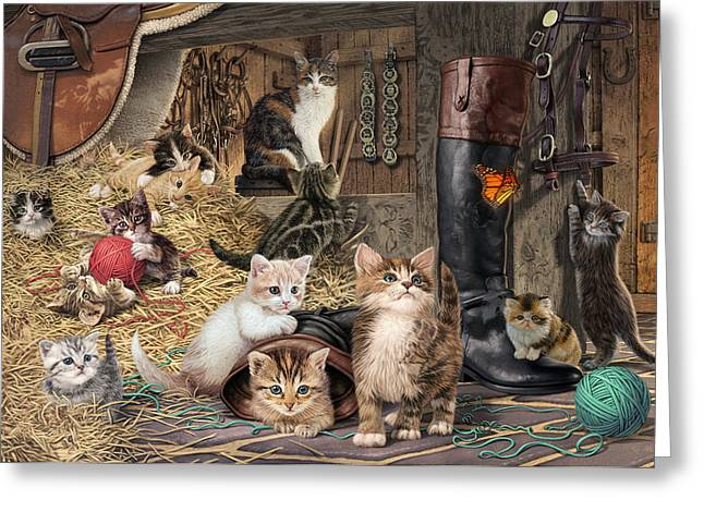Kitten Capers Greeting Card by Steve Read