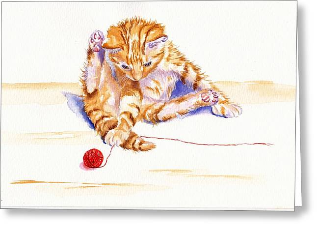 Kitten Interrupted Greeting Card