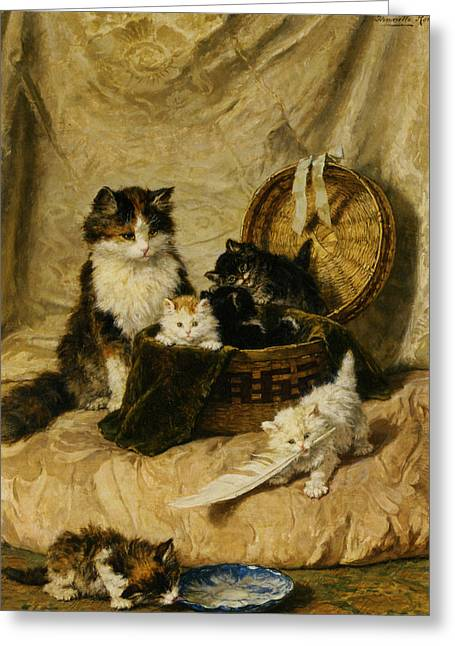 Kittens At Play Greeting Card by Henriette Ronner Knip