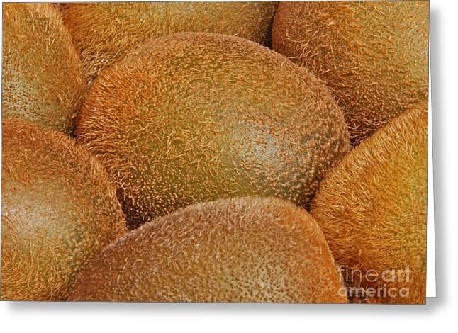Kiwi Fruit Greeting Card by Marv Vandehey