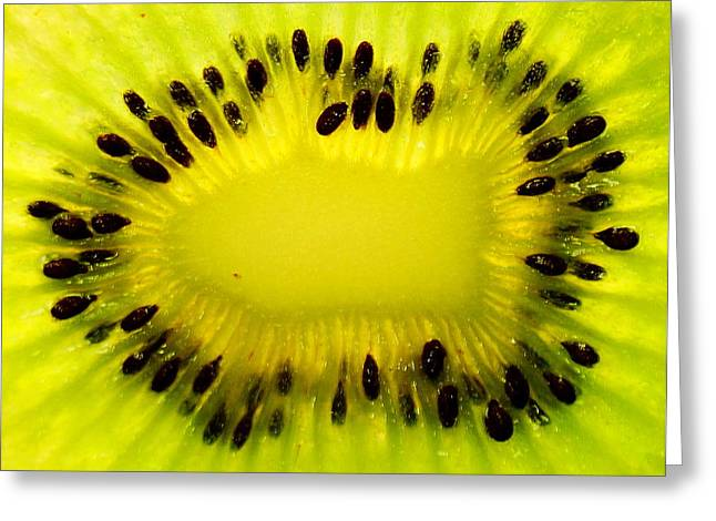 Greeting Card featuring the photograph Kiwi Sunflower by Chris Fraser