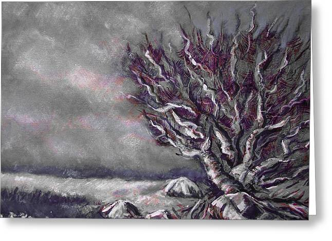 Knarly Tree Greeting Card by Jon Shepodd